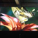 Home Led Screen